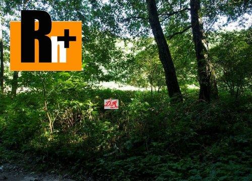 Foto Nižný Klátov Klatovianka na predaj trvalý trávnatý porast -