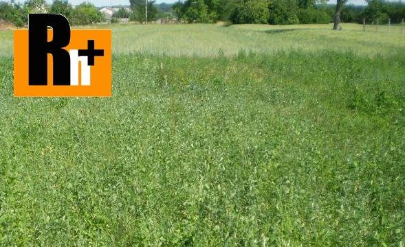 Foto Na predaj trvalý trávnatý porast Trenčianske Mitice - TOP ponuka