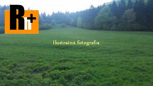 Foto Trvalý trávnatý porast Veľké Rovné okraj obce na predaj - 2101m2