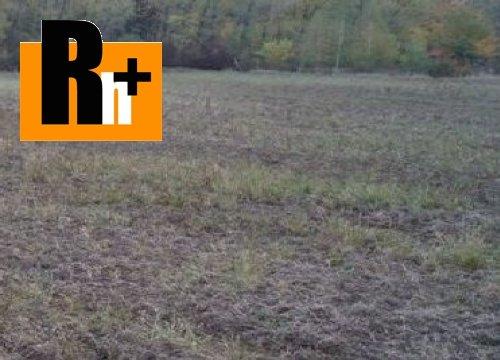 Foto Na predaj Svinná pozemok pre komerčnú výstavbu - TOP ponuka
