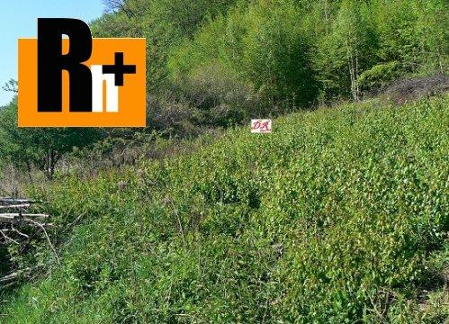 Foto Na predaj orná pôda Nižný Klátov Mlynky