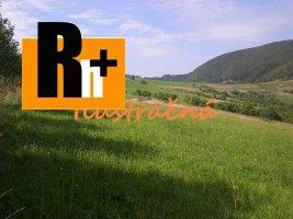 Trvalý trávnatý porast na predaj Dolná Tižina okraj obce