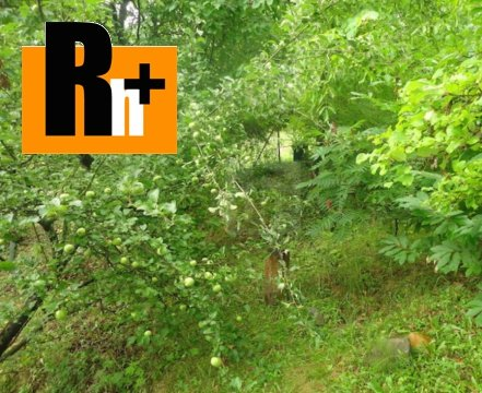 Foto Na predaj Mníchova Lehota Húštik záhrada