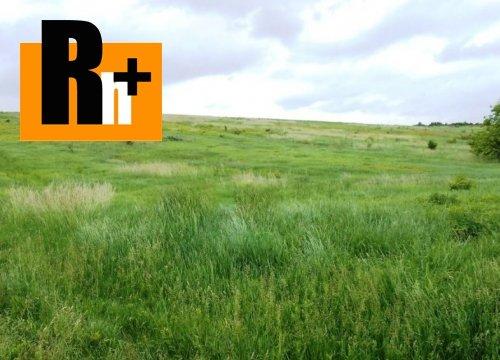 Foto Partizánske Malé Bielice na predaj pozemok pre bývanie - 35000m2