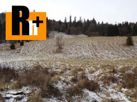 Foto Nálepkovo trvalý trávnatý porast na predaj