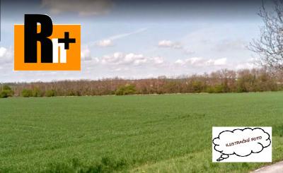 Pozemok pre komerčnú výstavbu na predaj Nitra smer Nové Sady - ihneď k dispozícii