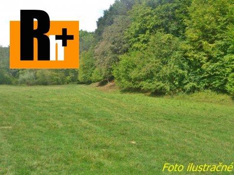 Foto Na predaj Púchov Nosice trvalý trávnatý porast - znížená cena