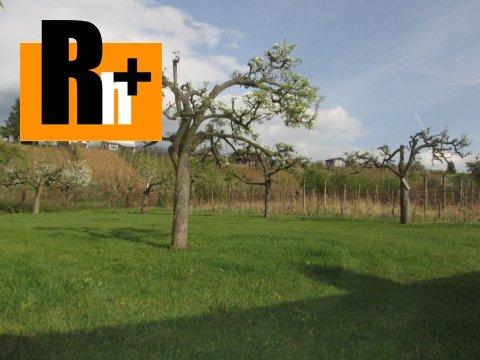 10. obrázok Kráľovský Chlmec . vinice, chmelnice na predaj - osobné vlastníctvo