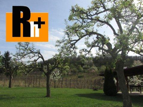 11. obrázok Kráľovský Chlmec . vinice, chmelnice na predaj - osobné vlastníctvo
