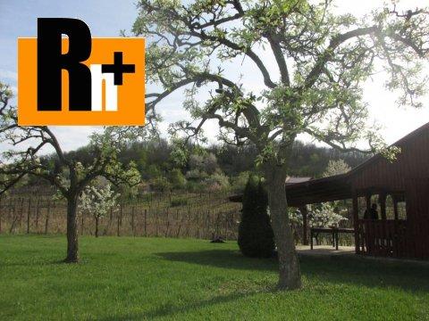 12. obrázok Kráľovský Chlmec . vinice, chmelnice na predaj - osobné vlastníctvo