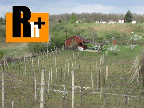 16. obrázok Kráľovský Chlmec . vinice, chmelnice na predaj - osobné vlastníctvo