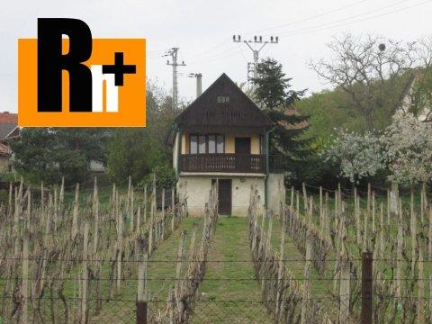 4. obrázok Na predaj vinice, chmelnice Viničky Tokajská vinohradnícka oblasť - exkluzívne v Rh+