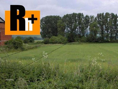 Foto Na predaj Ruskov . orná pôda