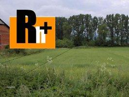 Na predaj Ruskov . orná pôda