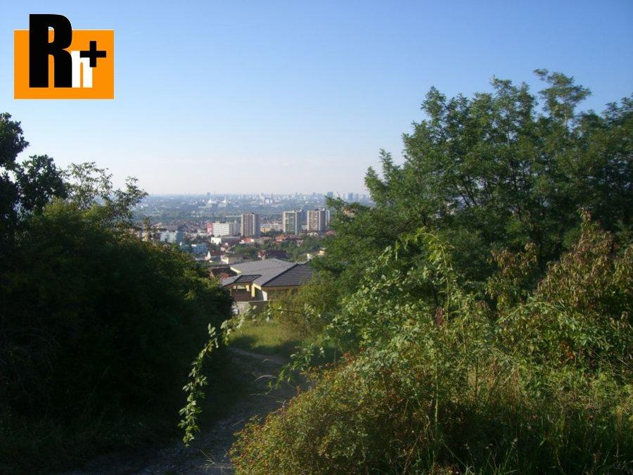 Foto Vinice, chmelnice Bratislava-Rača Fongi na predaj - osobné vlastníctvo