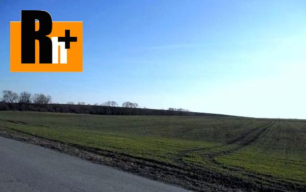 2. obrázok Veľké Dvorany na predaj poľnohospodárska pôda - 42000m2