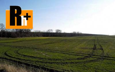 Poľnohospodárska pôda Veľké Dvorany na predaj - 42000m2