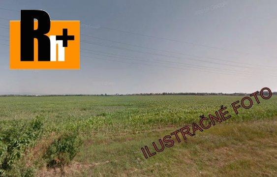 Foto Senec na predaj orná pôda - 23000m2