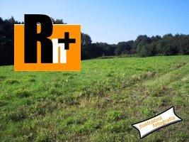 Nitra širšie centrum smer Sereď pozemok pre komerčnú výstavbu na predaj