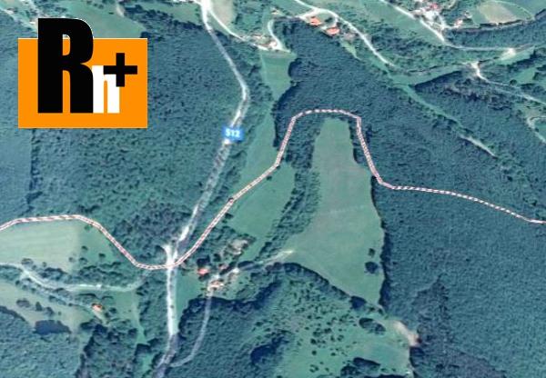 Foto Veľké Pole - INVESTIČNÁ PRÍLEŽITOSŤ na predaj trvalý trávnatý porast - 90000m2