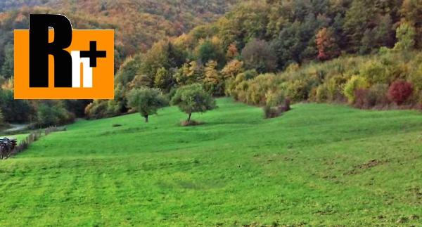 Foto Trvalý trávnatý porast Púchov Zbora na predaj - exkluzívne v Rh+