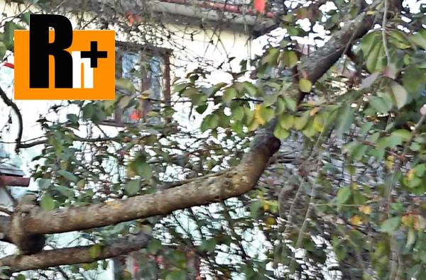 Foto Na predaj rodinný dom Púchov Horné Kočkovce - TOP ponuka