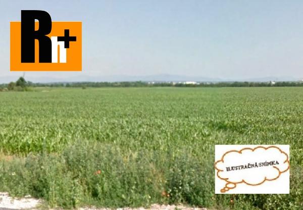 Foto Orná pôda na predaj Senec INVESTIČNÁ PRÍLEŽITOSŤ - 55000m2