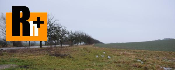 Foto Svinná trvalý trávnatý porast na predaj