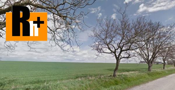Foto Na predaj Pezinok Vištuk trvalý trávnatý porast