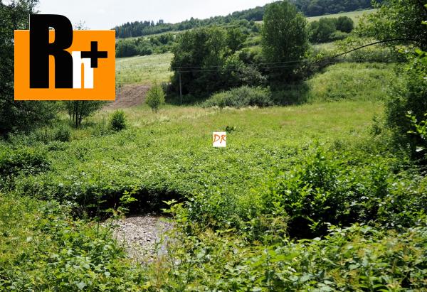 Foto Nižný Klátov Klatovianka trvalý trávnatý porast na predaj