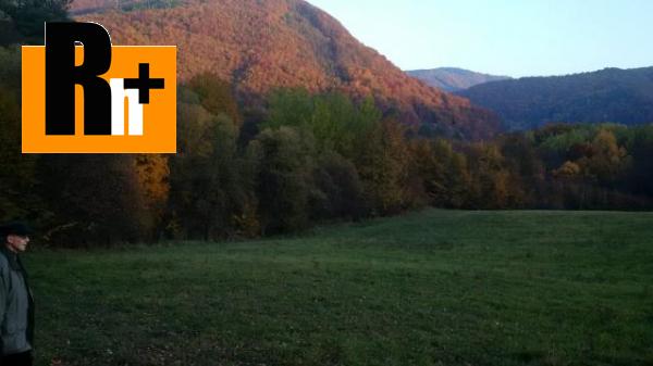 Foto Trvalý trávnatý porast na predaj Repište Strožková