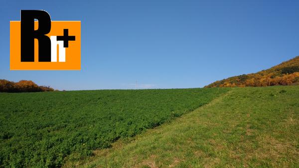 Foto Veľký Šariš Saris poľnohospodárska pôda na predaj