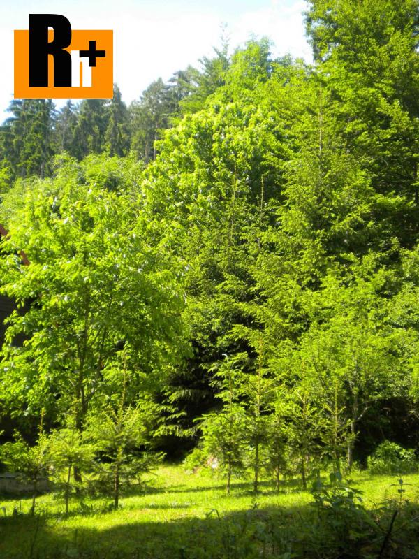 Foto Bystrička na predaj lesné pozemky - TOP ponuka