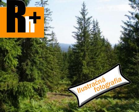 Foto Slovenské Pravno lesné pozemky na predaj - TOP ponuka