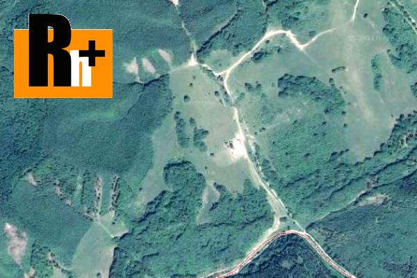 Foto Chvojnica na predaj trvalý trávnatý porast - 13550m2