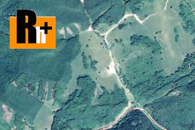 Trvalý trávnatý porast na predaj Chvojnica - 13100m2