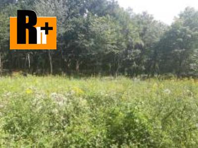 Pezinok Kučišfdorská dolina na predaj trvalý trávnatý porast - TOP ponuka 2