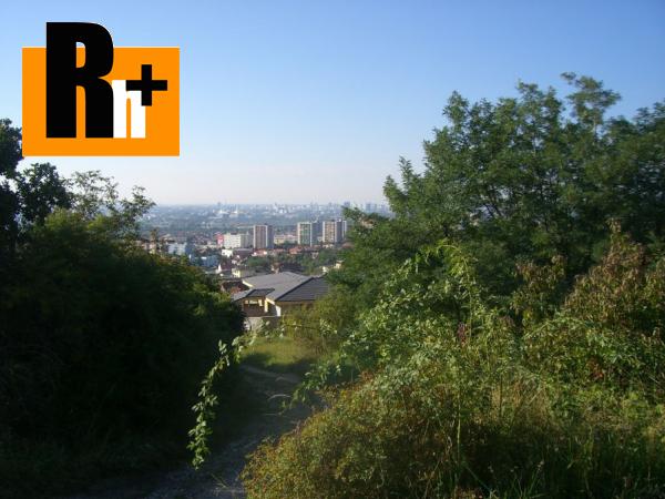 2. obrázok Vinice, chmelnice na predaj Bratislava-Rača Fongi - TOP ponuka