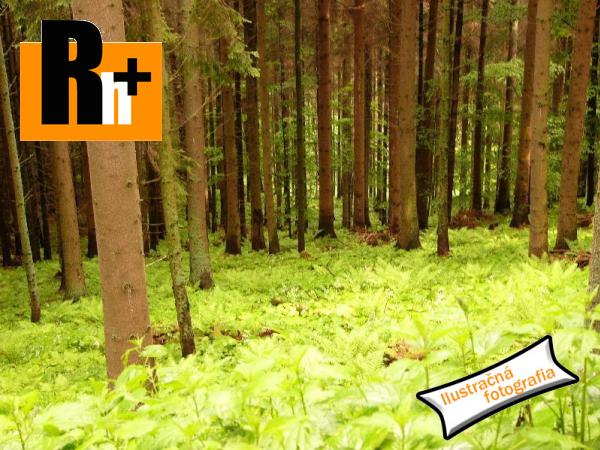 2. obrázok Jasenovo na predaj lesné pozemky - TOP ponuka