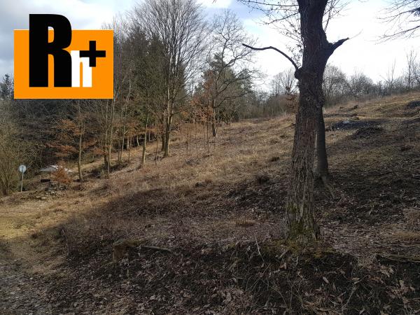 3. obrázok Hričovské Podhradie 13524m2 na predaj trvalý trávnatý porast - exkluzívne v Rh+