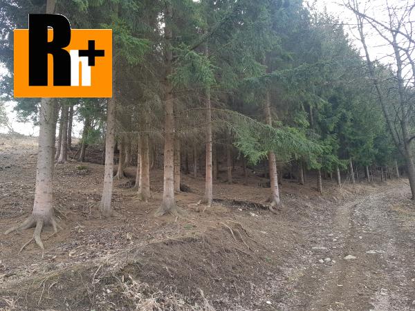 4. obrázok Hričovské Podhradie 13524m2 na predaj trvalý trávnatý porast - exkluzívne v Rh+