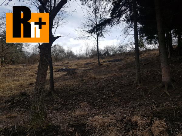 5. obrázok Hričovské Podhradie 13524m2 na predaj trvalý trávnatý porast - exkluzívne v Rh+