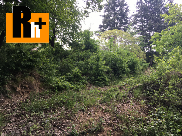 2. obrázok Limbach Suchý Vrch trvalý trávnatý porast na predaj - TOP ponuka