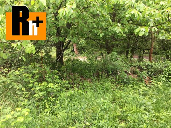 3. obrázok Limbach Suchý Vrch trvalý trávnatý porast na predaj - TOP ponuka