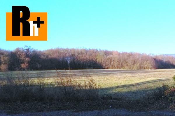 1. obrázok Pravenec trvalý trávnatý porast na predaj - 5390m2