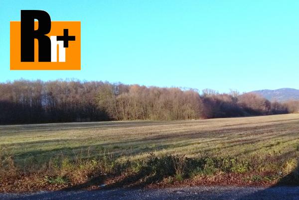 2. obrázok Pravenec trvalý trávnatý porast na predaj - 5390m2