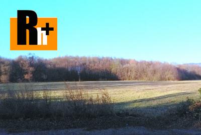 Pravenec trvalý trávnatý porast na predaj - 5390m2