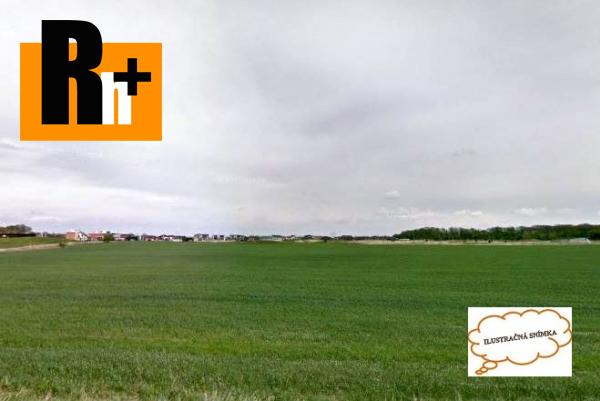 Foto Orná pôda Hrubá Borša na predaj - 22150m2