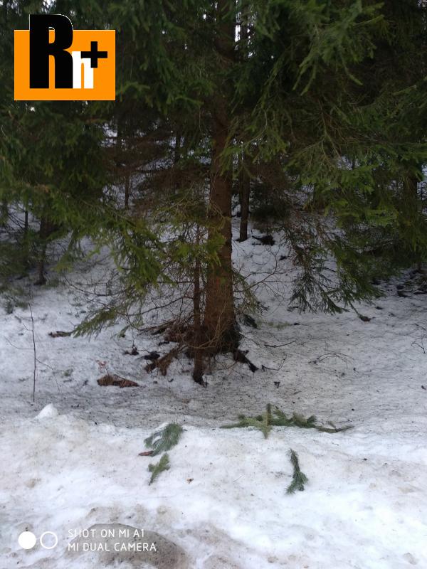 Foto Na predaj Slovenské Pravno lesné pozemky - TOP ponuka