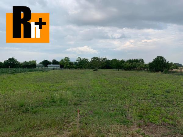 Foto Dunajská Streda Blažov 3 km od DS pozemok pre bývanie na predaj - exkluzívne v Rh+